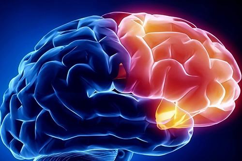 Pesquisadores da UFMG patenteiam técnica que bloqueia crises epiléticas