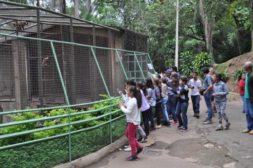 Com risco de queda de 30 árvores, zoológico de Varginha fecha para manutenção