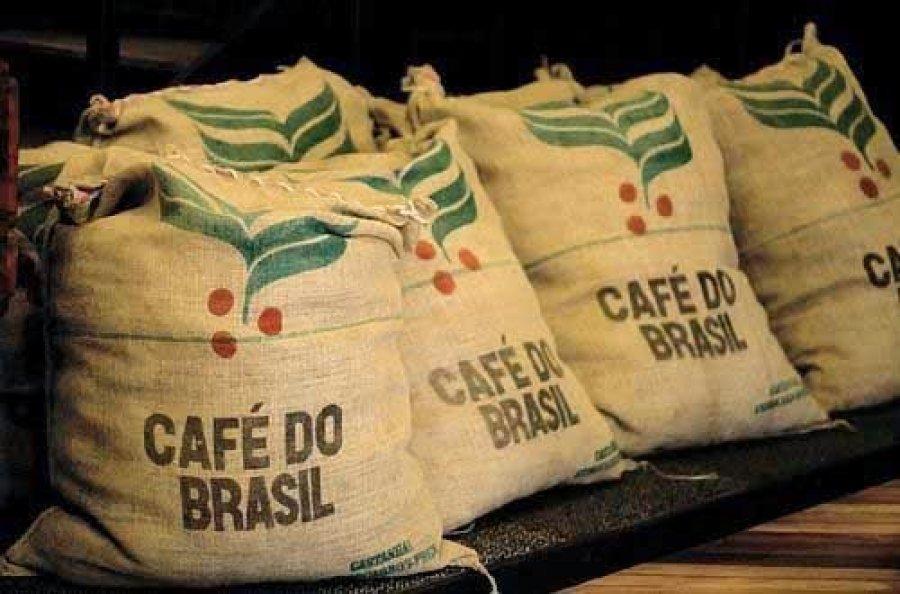 OIC: exportação mundial de café cai 4% em agosto, para 10,448 milhões de sacas