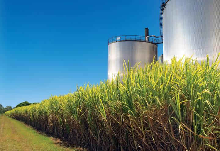 Maia diz que ainda aguarda acordo do governo sobre cota para etanol