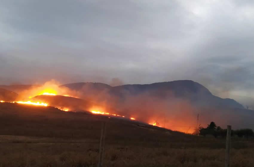 Com queimada recorde em Timóteo, Codema impede aproveitamento do solo nessas áreas