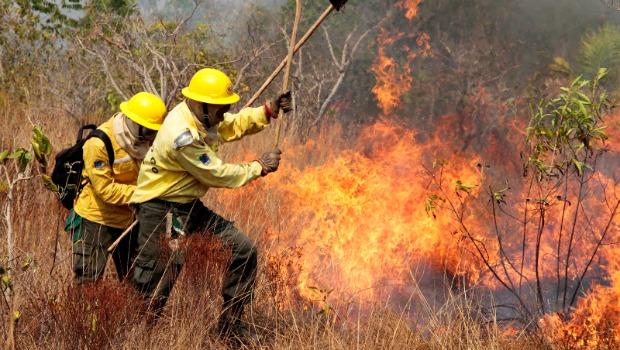 Detentos vão atuar no combate a incêndios florestais em Belo Horizonte, Januária e Curvelo