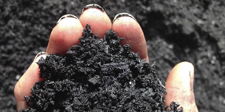 Resíduos de restaurante da UFMG são transformados em biocarvão ativado