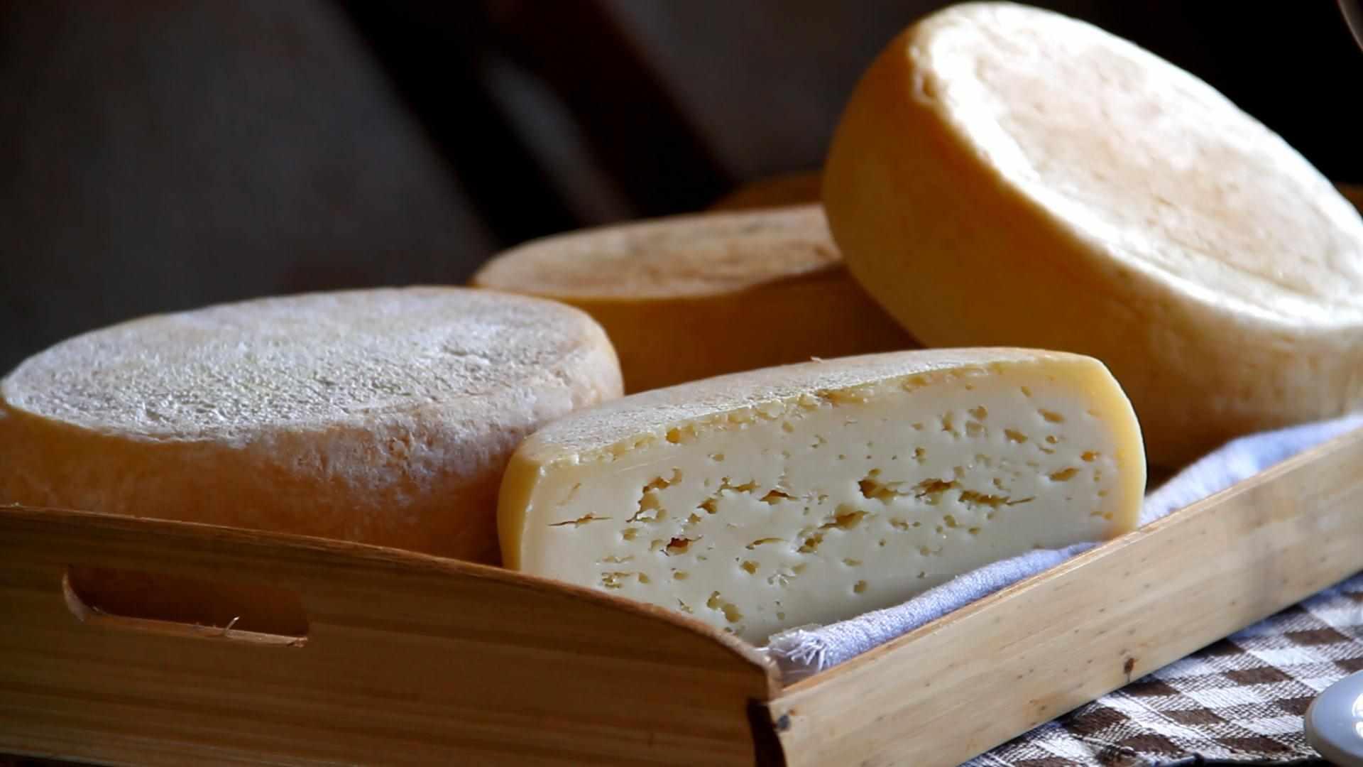 Secretaria de Agricultura aponta alternativas para a produção de queijos da Serra Geral