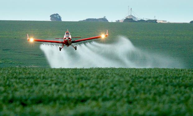 Defensivos: Agricultura aprova registro de novos produtos