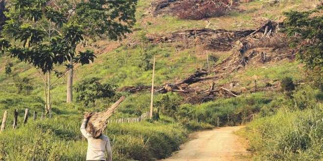 Projeto que prorroga prazo de regularização de terra em fronteira