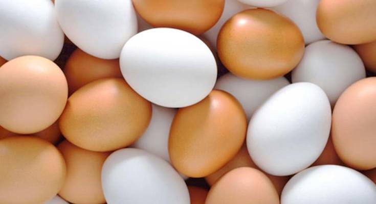 Preços dos ovos recuam 7,3% na semana puxados pelas carnes