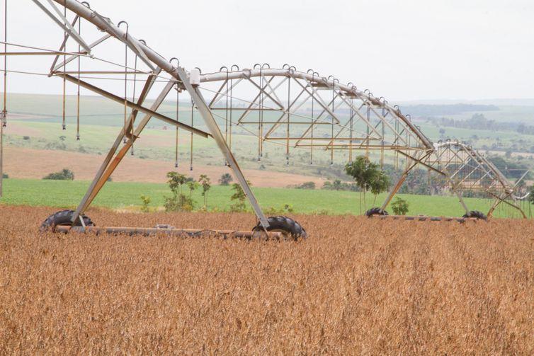 Produção de grãos do país na safra 2019/2020 deverá ser recorde