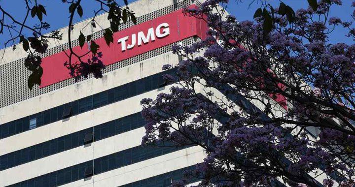 TJMG: indenização por morte de homem atingido por bambuzal